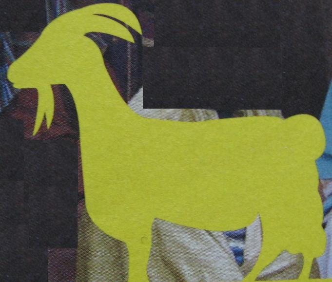 silhouette geit