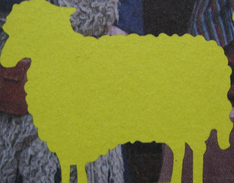 silhouette schaap