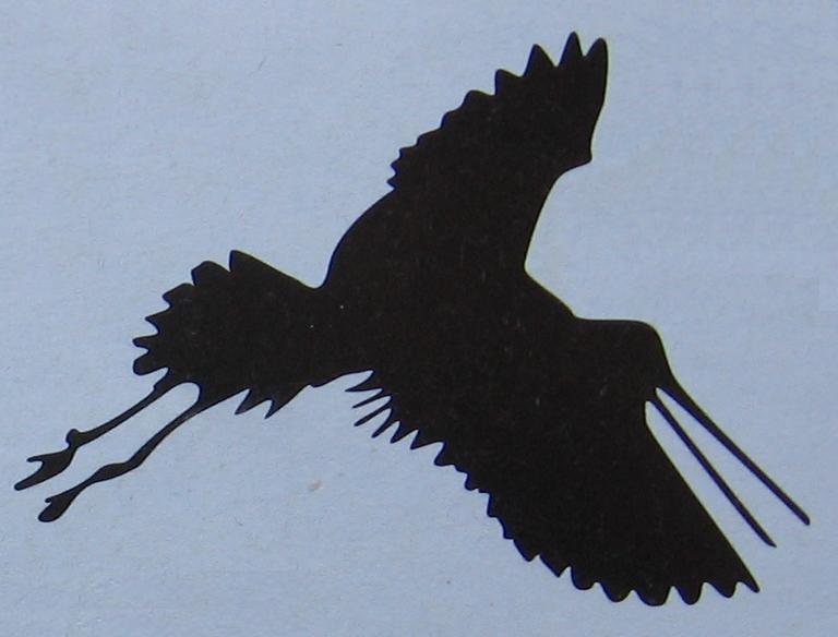 silhouette vliegende ooievaar