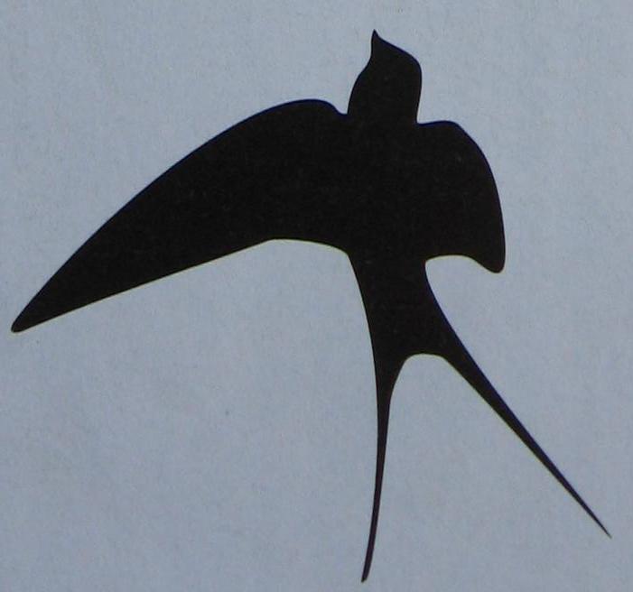 silhouette vliegende zwaluw