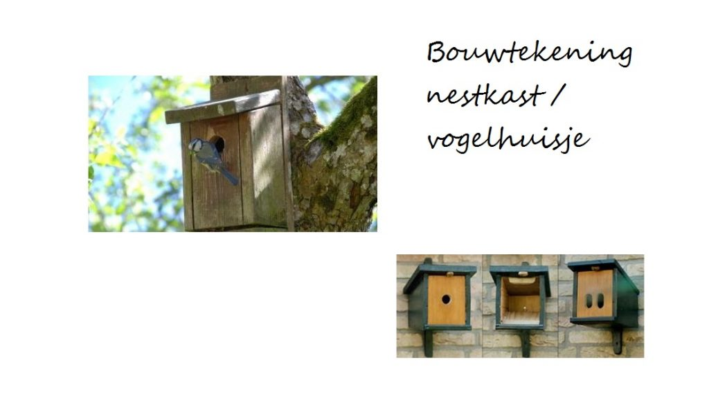 Vogelhuisje en nestkastje zelf maken