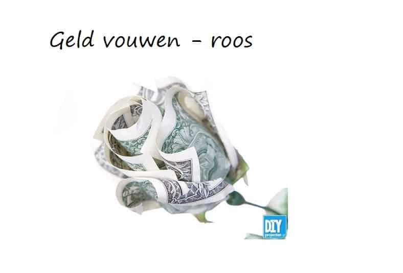 geld roos vouwen