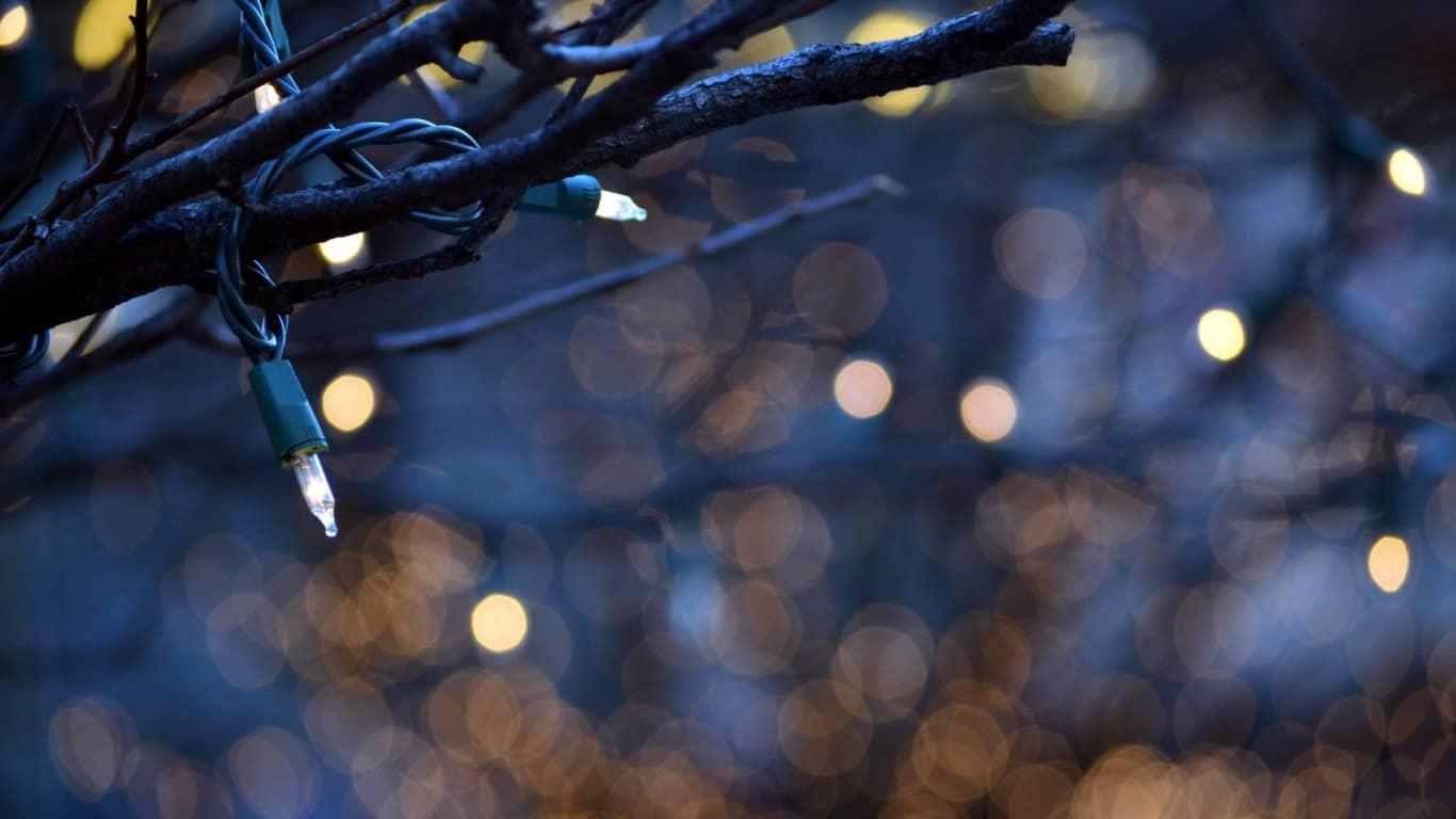Hang Christmas Lights On A Tree