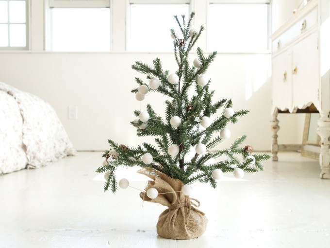 kerstboom met kluit. Bron: etsy.com