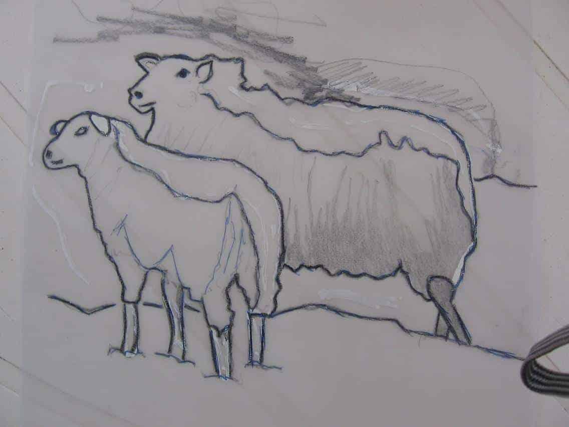 linosnede schapen op transparant