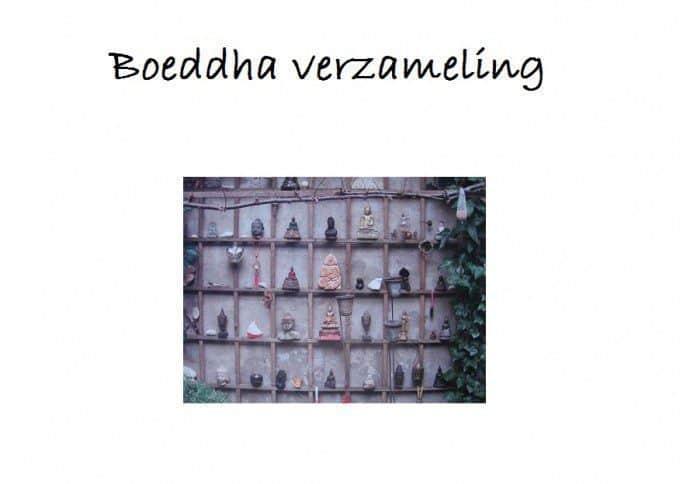 verzameling buddha