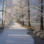 Clingendael in de winter foto's om te inspireren