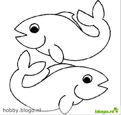 Vissen Tekenen En Schilderen Hobby Blogo Nl