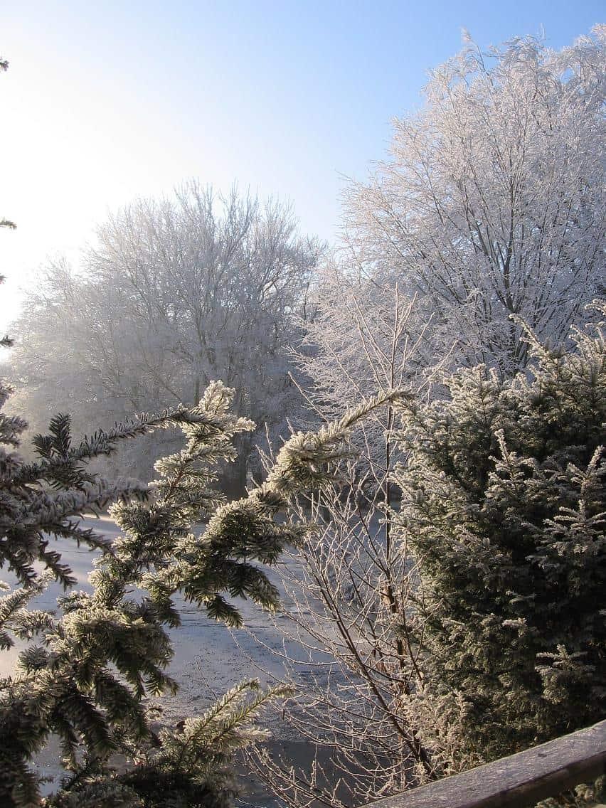 Clingendael winter 231207 012