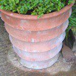 Kalkvlekken verwijderen op terracotta bloempot