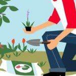 Starten van een tuin tips rondom je huis
