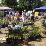 Exotische plantenbeurs 2e pinksterdag