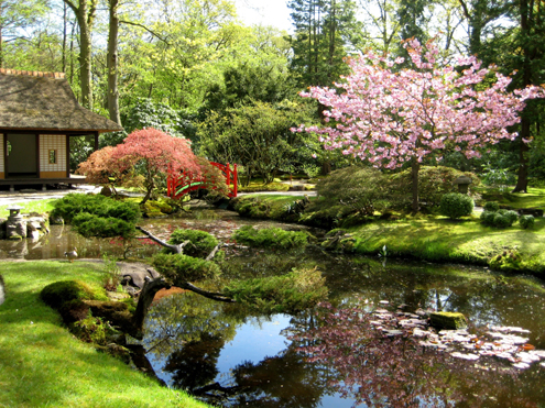 bijzondere tuinen in Nederland