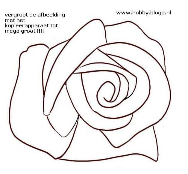 roos tekenen in stappen