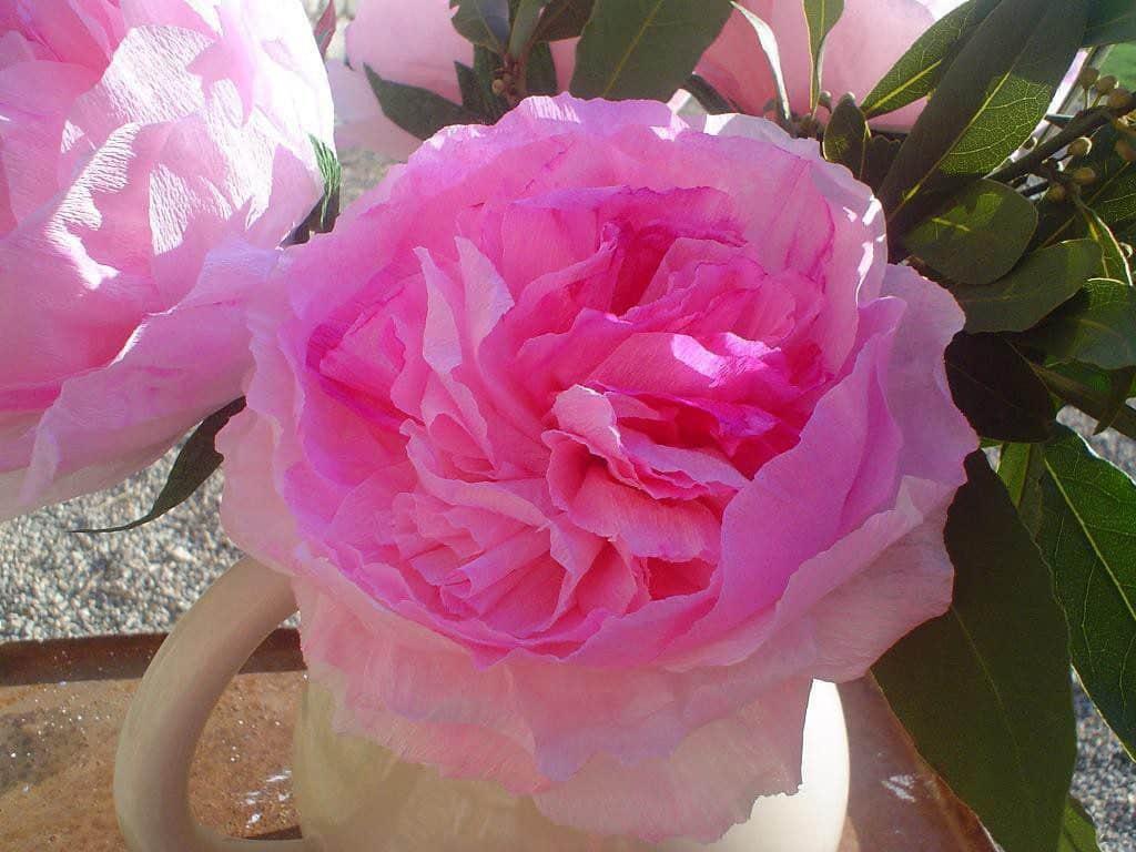 Papieren rozen leren maken