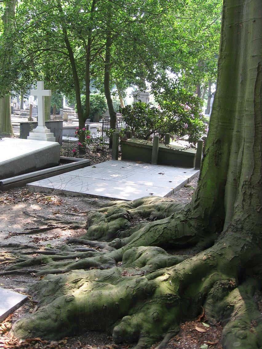 impressie begraafplaats 4