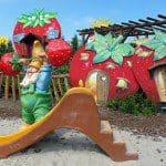 Spelen, plukken en proeven in themapark Aardbeienland