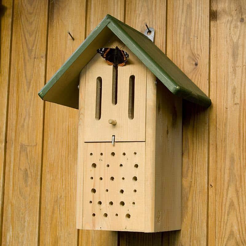 bijen plekje geven