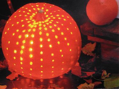 Uithollen Pompoen Halloween.Pompoen Uithollen Als Sfeerlicht Halloween Hobby Blogo Nl