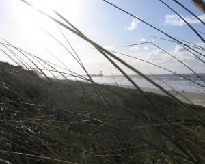 stadswandeling den haag en strandwandeling scheveningen