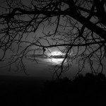 Echt donker beleven in oktober