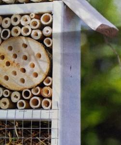 hoe bijenhotel zelf maken