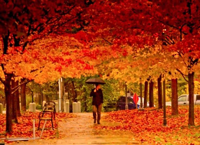 weekend midweek weg in de herfst