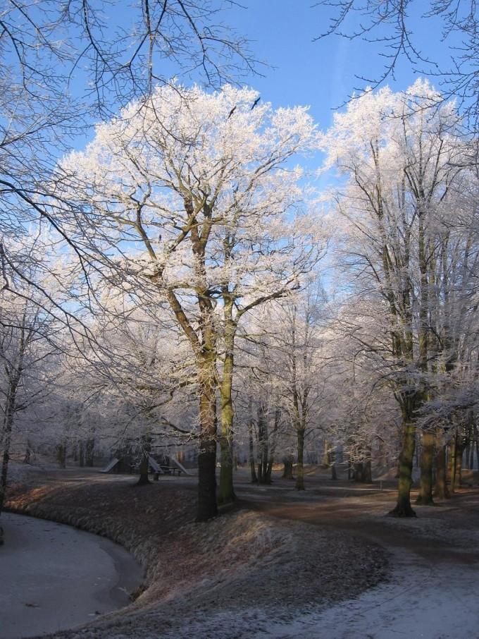 Clingendael winter 231207 002