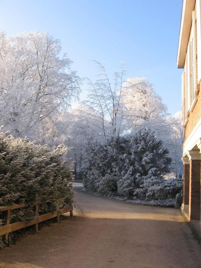 Clingendael winter 231207 011