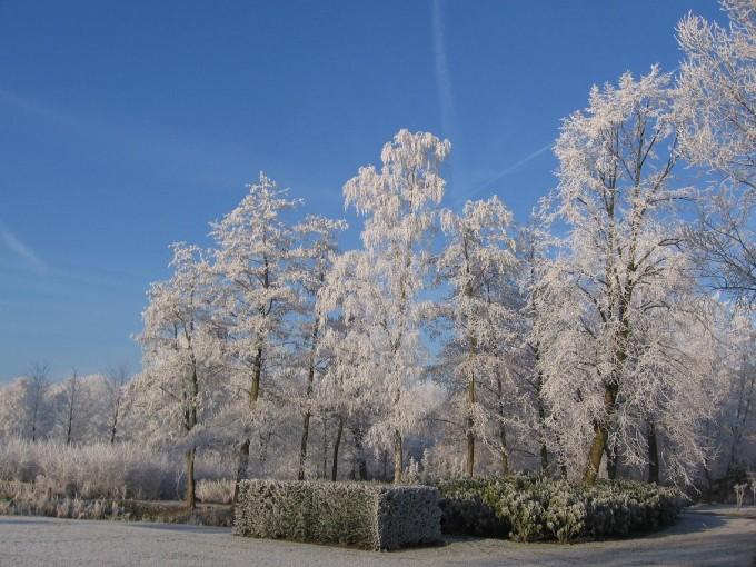 Clingendael winter 231207 019