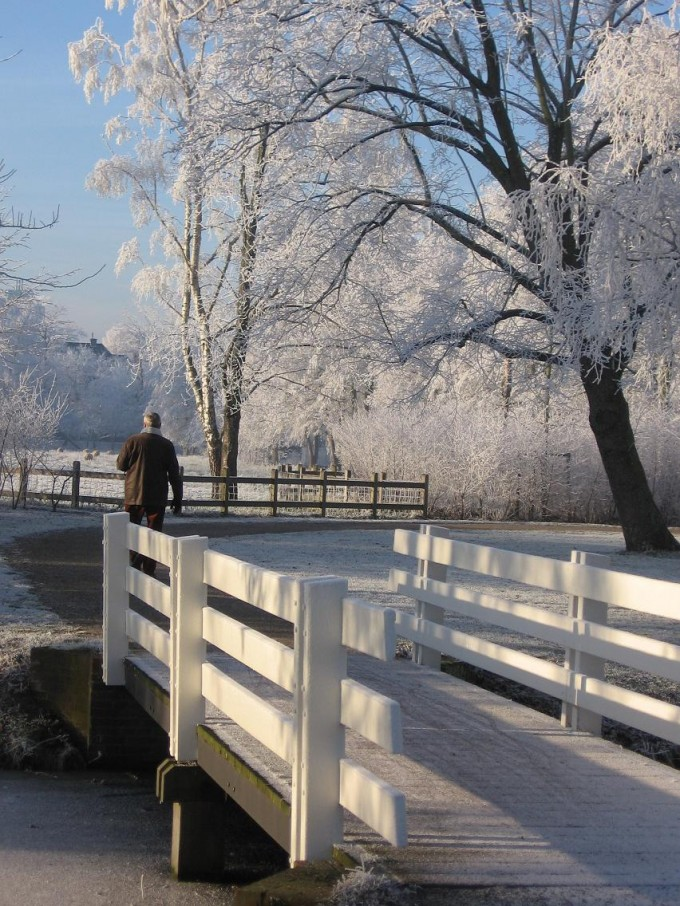 Clingendael winter 231207 024
