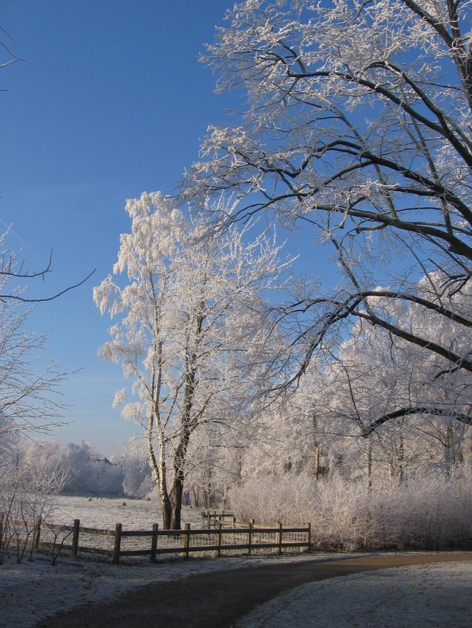 Clingendael winter 231207 027