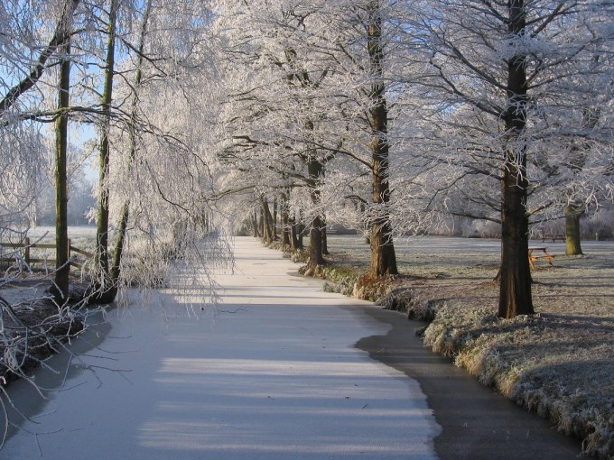 Clingendael winter 231207 032