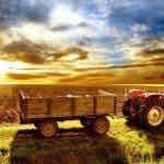 Boerderij leven ervaren tijdens boerensurvival