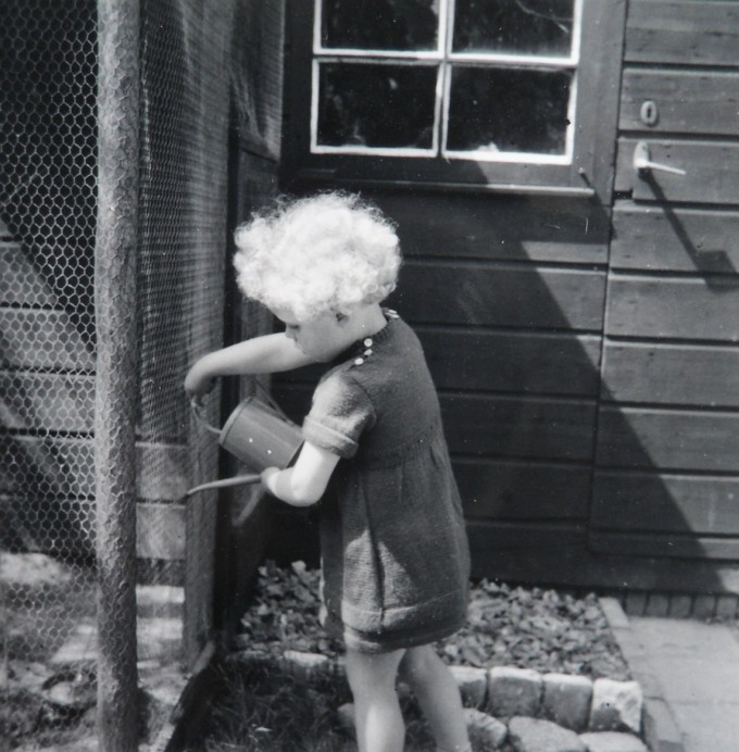 kanarie voliere 1954