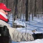 Vogels gezond voeren in de winter