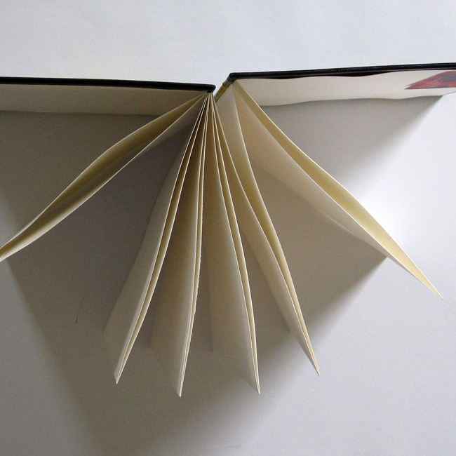 zig-zag-boek / harmonicaboek. Bron: nantdesigns.blogspot.nl