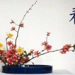 Bloemschikken en Ikebana tips
