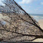 Creatief aan zee in Scheveningen
