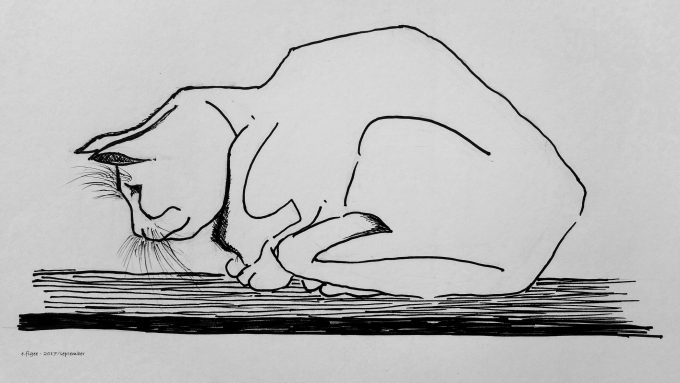 Tekenen en schetsen oefening met een poes van Escher
